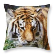 Detroit Tiger Throw Pillow
