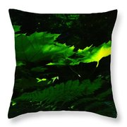 Devils Club In The Light  Throw Pillow