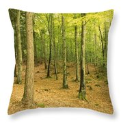 Devils Glen Woods, County Wicklow Throw Pillow