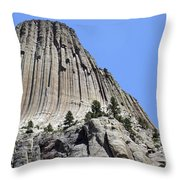 Devil's Tower Full View Throw Pillow