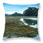 Devoran River Throw Pillow