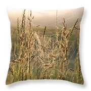 Dew And Spider Webs Throw Pillow