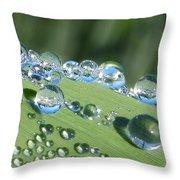 Dew Beads Throw Pillow