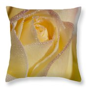 Dew Bejeweled Peace Rose Throw Pillow