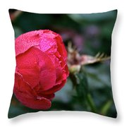 Dew Drenched Rose Throw Pillow