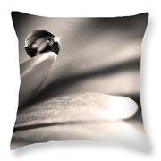 Dew Drop In Flower Petal Throw Pillow