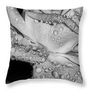 Dew Drop Rose Throw Pillow
