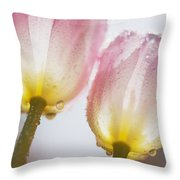 Dew On Tulips Throw Pillow