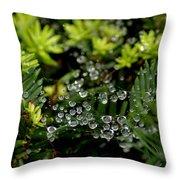 Dew Spheres Throw Pillow