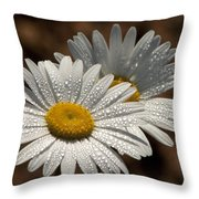 Dew Tell Oxeye Daisy Wildflowers Throw Pillow