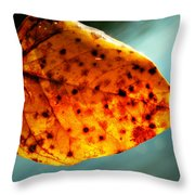 Dew To The Fall Throw Pillow