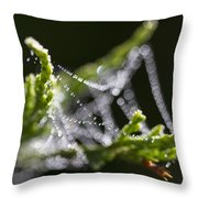 Dew With The Jitters Throw Pillow