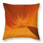 Dewdrops On A Flower Throw Pillow
