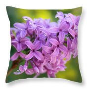 Dewdrops On Lilacs Throw Pillow