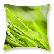 Dewy Green Grass  Throw Pillow