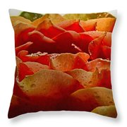 Dewy Morn Throw Pillow