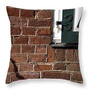 Diagonal Shadow Throw Pillow