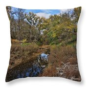 Diamond Creek Throw Pillow