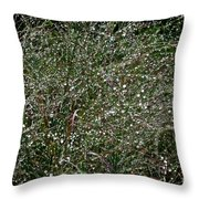 Diamond Drops Throw Pillow
