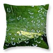 Diamond Encased Throw Pillow