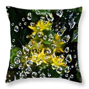 Diamond Studded Web Throw Pillow