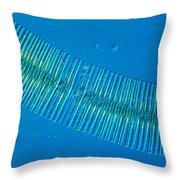 Diatonaceae Throw Pillow