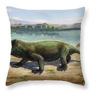 Dicynodon Trautscholdi, A Prehistoric Throw Pillow