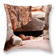 Did Anyone Live Here Throw Pillow by Bob and Nancy Kendrick