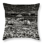 Died Of Thirst Throw Pillow