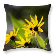 Different Angle Throw Pillow