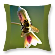 Digging For Liquid Gold Throw Pillow
