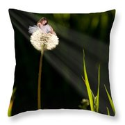 Digital Art Essay I Throw Pillow