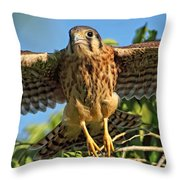 Digitally Enhanced Image, Painterly Throw Pillow