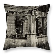 Dilapidated House Throw Pillow