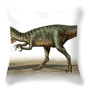Dilophosaurus Wetherilli, A Prehistoric Throw Pillow