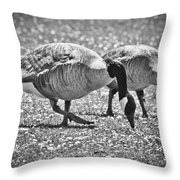 Dining On Daisies Throw Pillow