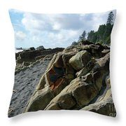Dinosauer Throw Pillow