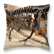 Dinosaurs At The Smithsonian Throw Pillow