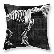 Diprotodon, Cenozoic Mammal Throw Pillow