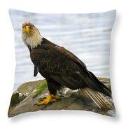 Dirty Bird Throw Pillow