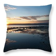 Discovery Park Reflections Throw Pillow