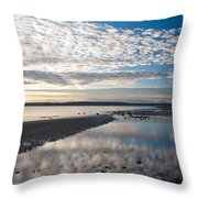 Discovery Park Tidepools Throw Pillow