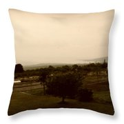 Distant Shoreline Throw Pillow