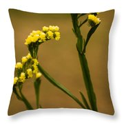 Distinctive Look Throw Pillow