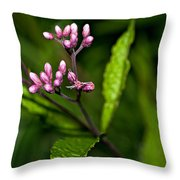 Ditch Mystery Throw Pillow