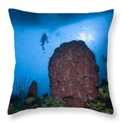 Diver And Barrel Sponge, Belize Throw Pillow