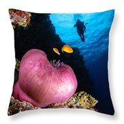 Diver And Magnificent Anemone, Fiji Throw Pillow