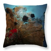 Diver And Sea Fan At Liberty Wreck Throw Pillow