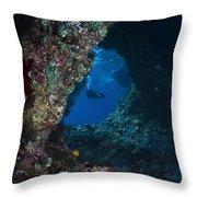 Diver At Boo Windows In Raja Ampat Throw Pillow