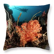 Diver Explores A Coral Reef Throw Pillow